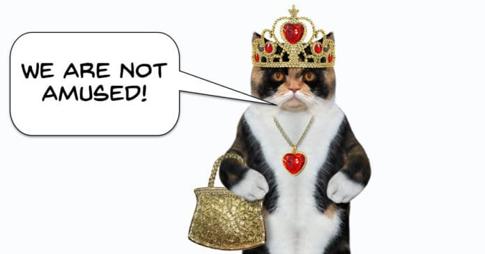 Humorous image of a cat dressed as the Queen.