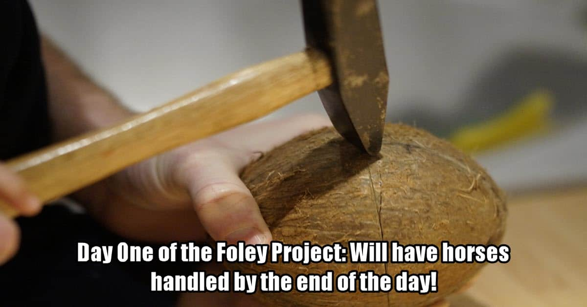 Image of coconut shells used as foley tools.