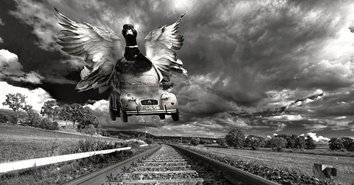 Flying duck car