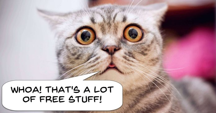 Comical image of a cat surprised about free video assets.